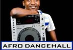 DJ Rema Afro Dancehall Mix 2017 Mp3 Download