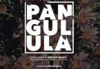 King Kaka ft Arrow Bwoy - Pangulula