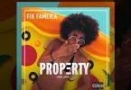 Fik Fameica - Property