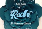 King Kaka ft Barnaba - Radhi