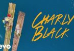 Watch Charly Black - Love Every Woman (Video)