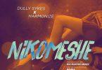 Nikomeshe by Dully Sykes ft Harmonize
