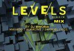 DJ MWORIA - Levels Riddim Mix