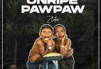 Zlatan Unripe Pawpaw