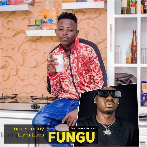 Linex ft Lava Lava - FUNGU Mp3 Download