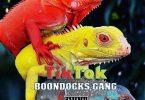 Boondocks Gang - TIKTOK Mp3 Download
