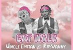 Uncle Epatan ft Rayvanny - Cat Walk