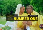 Rayvanny ft Zuchu - Number One video