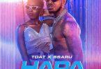 Timmy Tdat ft Ssaru HAPA Mp3 Download