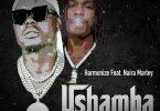 Harmonize ft Naira Marley - Ushamba Remix Mp3 Download