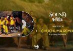 Rayvanny ft Frenna Chuchuma Remix Mp3 Download