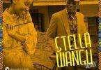 Stella Wangu Remix Mp3 by Freshley Mwamburi