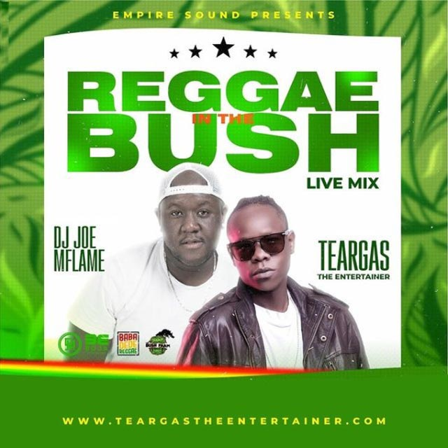 Dj Joe Mfalme Reggae Roots Mix 2021