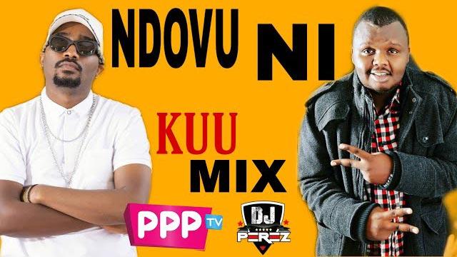 DJ PEREZ NDOVU NI KUU 254 Ever Vol 5 Mix 2021 Mp3 Download