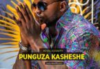 Khaligraph Jones Punguza Kasheshe Mp3 Download