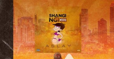 Aslay Shangingi Mtoto Mp3 Download