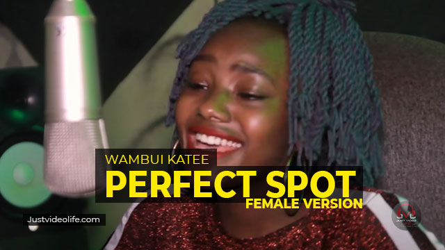 Busy Signal Perfect Spot Female Cover By Wambui Katee Mp3 Download