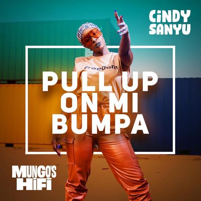 Cindy Sanyu Pull Up On Mi Bumpa Mp3 Download