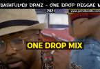 DJ Bashful ft DJ Draiz One Drop Reggae Mix Mp3 Download