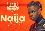 DJ Perez Afrobeat Summer Vibes Mix 2021 Mp3 Download
