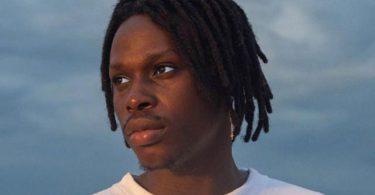 Fireboy DML Vibration Mp3 Download