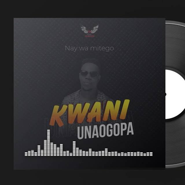 Nay Wa Mitego Kwani Unaogopa Mp3 Download
