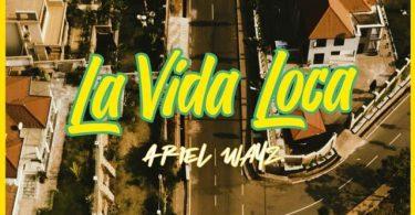 Ariel Wayz La Vida Loca Mp3 Download