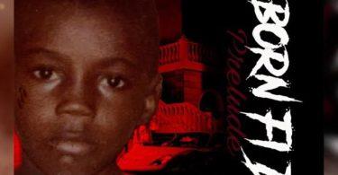 DJ Treasure Vybz Kartel Born Fi Dis Album Mix 2021 Mp3 Download