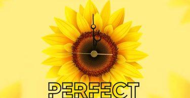 Jada Kingdom Perfect Timing Mp3 Download
