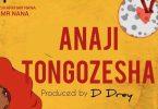 Mr Nana - Anajitongozesha Mp3 Download