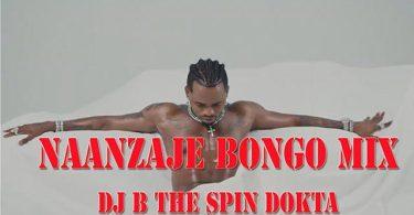 DJ B TheSpinDokta Naanzaje Bongo Mix 2021 Mp3 Download