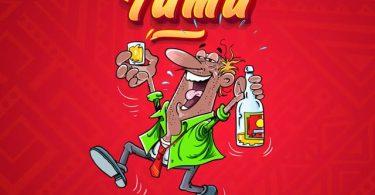 Marioo Beer Tamu Mp3 Download