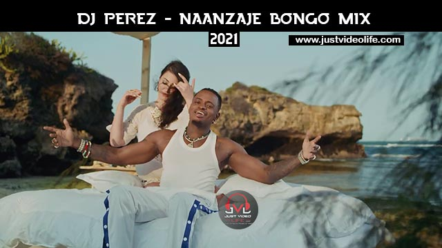 DJ Perez Naanzaje Mix 2021 Mp3 Download